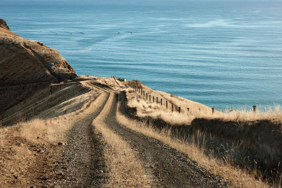 Scrubby Bay