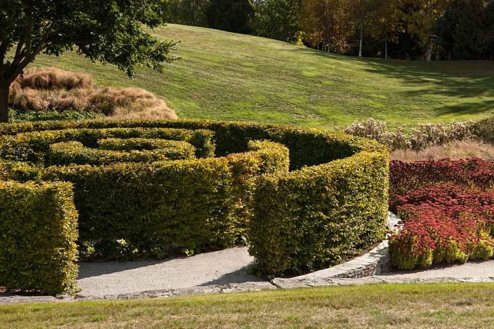 Hill Garden