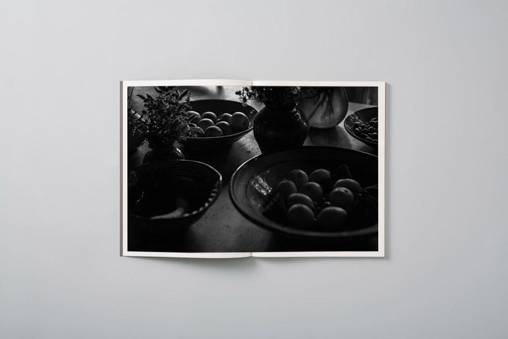 Ripe Fruit Vol 2 - Simon Devitt - book interior